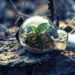 ビジネスの成長とマインドケアの秘密